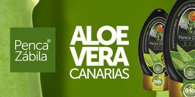 Aloe Vera Penca Zabila fresco puro en TuCanarias en TuCanarias.com